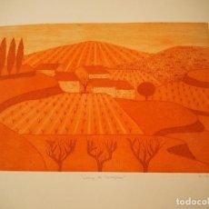 Arte: CONCHA IBAÑEZ. CAMP DE TARRAGONA. GRABADO. FIRMADO Y NUMERADO 89/150.. Lote 197381158