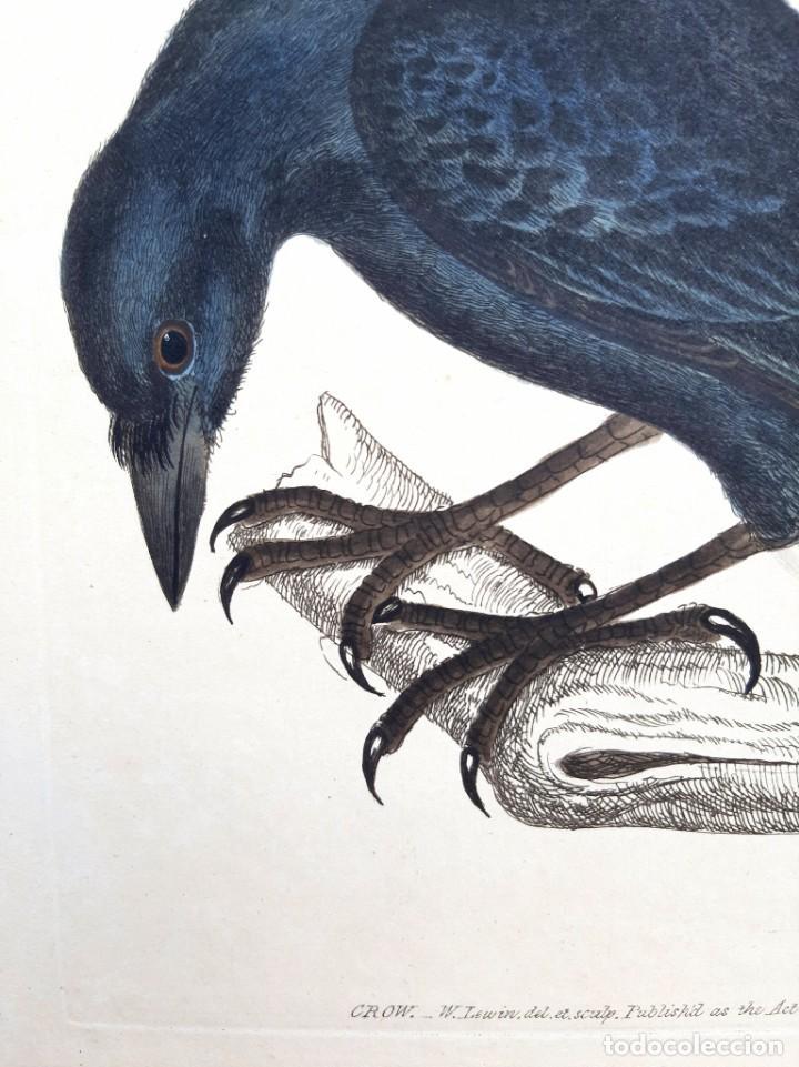 Arte: Pareja de grabados. s. XVIII - Foto 2 - 36462699