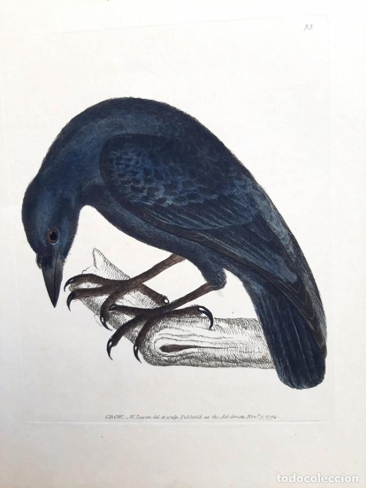 PAREJA DE GRABADOS. S. XVIII (Arte - Grabados - Antiguos hasta el siglo XVIII)