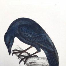 Arte: PAREJA DE GRABADOS. S. XVIII. Lote 36462699
