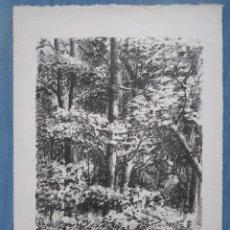 Arte: J. MICHALSKI. 2/9. Lote 205521046