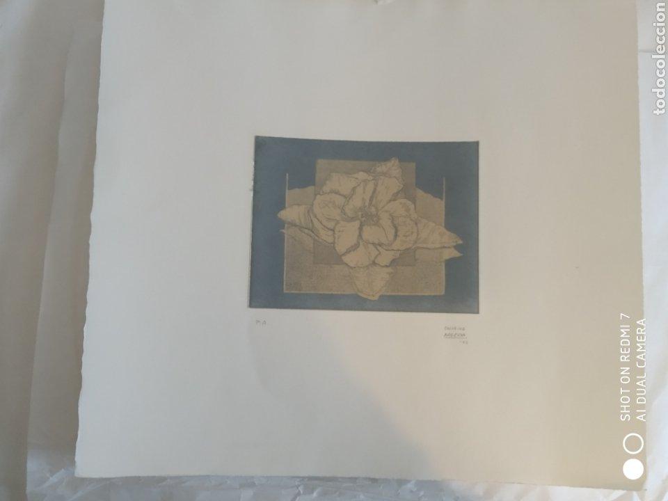 Arte: Grabado de marta chirino argenta P.A. prueba de autor 2005 17x13 cm el grabado - Foto 2 - 209671516