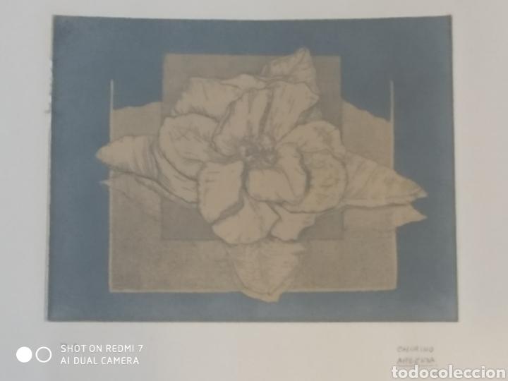 Arte: Grabado de marta chirino argenta P.A. prueba de autor 2005 17x13 cm el grabado - Foto 3 - 209671516