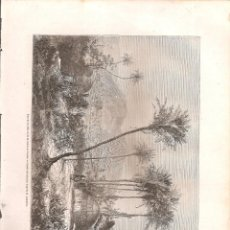 Arte: 2355. SENEGAL. TIMBO. Lote 210491721