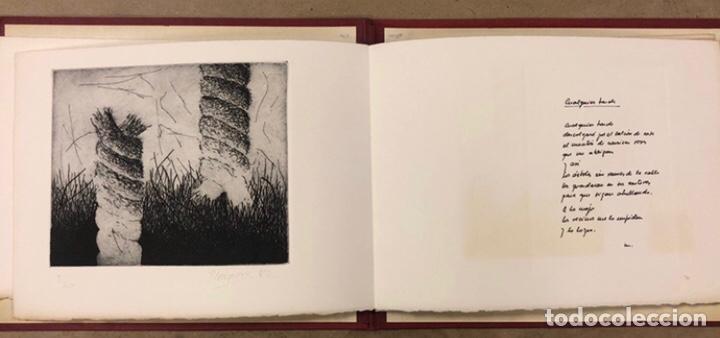 Arte: PORTFOLIO 6 GRABADOS ORIGINALES DE J.M. ELEXPURU Y 6 POEMAS DE M. JAUREGUI ESTAMPADOS A MANO - Foto 4 - 210614187