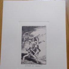 Arte: GOYA, LOS CAPRICHOS N.65 DONDE VÁ MAMÁ? GRABADO ORIGINAL CON CERTIFICADO. Lote 210746412