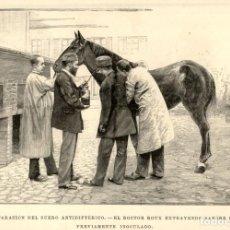 Arte: 1894 - PARIS - SUERO ANTIDIFTERICO - DOCTOR ROUX - CABALLO - LA ILUSTRACIÓN ESPAÑOLA. Lote 211685390