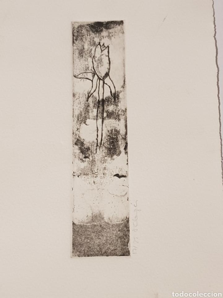 PEQUEÑO GRABADO FIRMADO Y NUMERADO A LAPIZ EL N° 17 DE 25 MIDE 16 X 27.5 DESCONOZCO LA FIRMA (Arte - Grabados - Modernos siglo XIX)