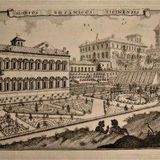 Arte: ANTIGUO GRABADO JARDÍN BOTÁNICO,HORTUS BOTANICUS TICINENSIS. RAMIS SC.BOTÁNICA.. Lote 212756543