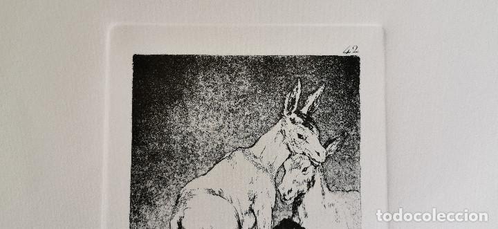 Arte: Goya,Los Caprichos n.42 Tu que no puedes,aguafuerte original directo de plancha con certificado - Foto 10 - 212763663