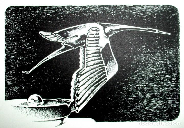 MASCOTA HISPANO-SUIZA. GRABADO ORIGINAL DE FERNANDO HOYOS. SERIE LIMITADA DE 50 EJEMPLARES. (Arte - Grabados - Contemporáneos siglo XX)