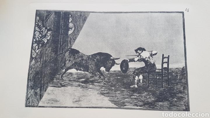 Arte: LA TAUROMAQUIA DE GOYA , 40 LAMINAS DE 34 x 49 CM. AÑOS 70 ENCUADERNACION EN PIEL. - Foto 11 - 217906018