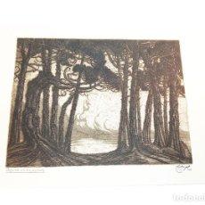 Arte: GRABADO/AGUAFUERTE TITULADO LAGUNA DE LOS PÁJAROS. CASTRO-GIL.1891-1961. LUGO.GALLEGO. 41X30 CM.. Lote 219023712