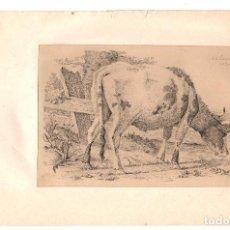 Arte: LOTE DE 10 GRABADOS DEL ARTISTA HOLANDES ANTHONY OBERMAN. S. XIX. Lote 219396852