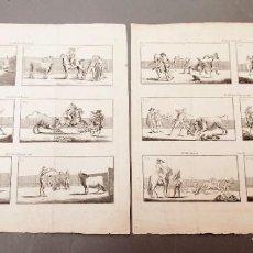 Arte: PEPE-HILLO - JOSÉ DELGADO GUERRA - LA TAUROMAQUIA, O ARTE DE TOREAR - 1804 - 2 GRABADOS. Lote 221237498