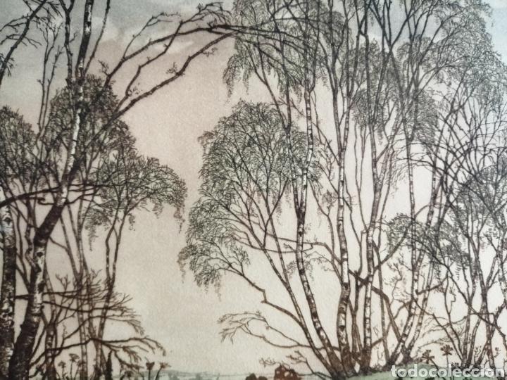 Arte: James Priddey (Birmingham 1916-1980).Grabado firmado y titulado. - Foto 5 - 224840816