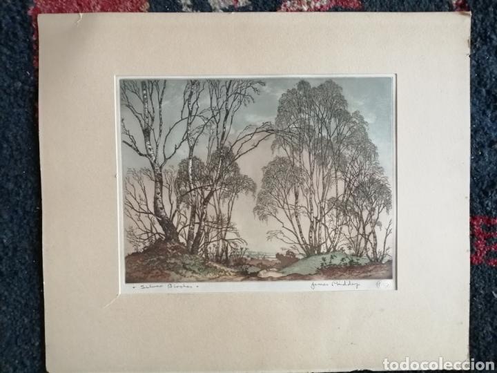 Arte: James Priddey (Birmingham 1916-1980).Grabado firmado y titulado. - Foto 8 - 224840816