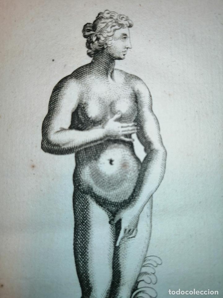 Arte: Venus de Medicis, S. Thomassin Fecit, An Coebevox Sculp. 1724. Papel 24x20 cm. - Foto 3 - 225145542