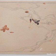 Arte: EXQUISITO GRABADO JAPONÉS ORIGINAL, FINALES SIGLO XIX-PPIOS XX, BUEN ESTADO, 34.5 X 26 CM, CALIDAD. Lote 230809715