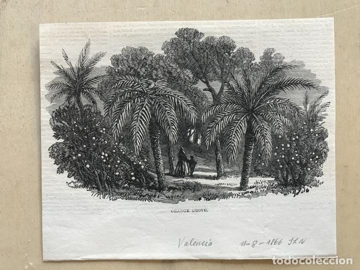 Arte: Huerto de naranjos en Valencia (España), 1866. Anónimo - Foto 2 - 236027885
