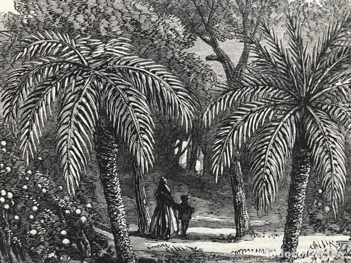 Arte: Huerto de naranjos en Valencia (España), 1866. Anónimo - Foto 3 - 236027885