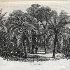 Arte: HUERTO DE NARANJOS EN VALENCIA (ESPAÑA), 1866. ANÓNIMO. Lote 236027885
