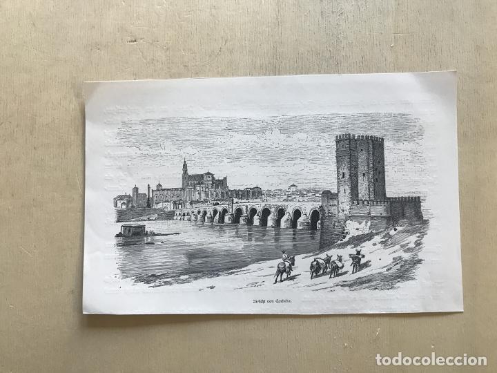 Arte: Vista panorámica de Córdoba (España), hacia 1885. Anónimo - Foto 2 - 236149740