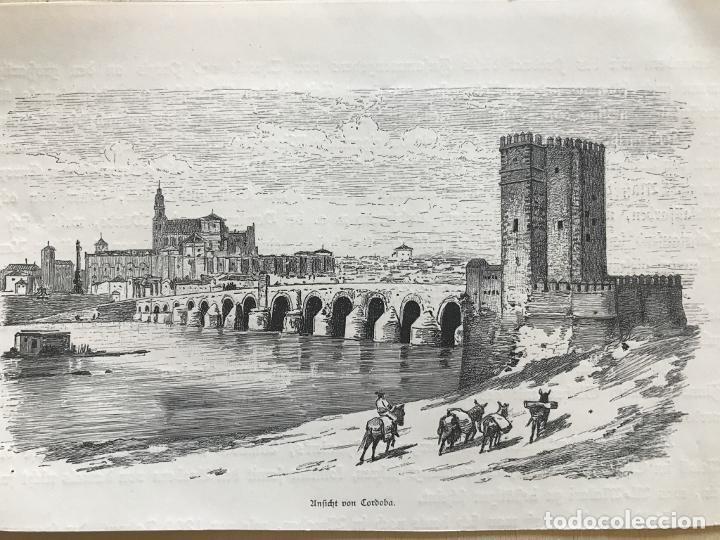 Arte: Vista panorámica de Córdoba (España), hacia 1885. Anónimo - Foto 3 - 236149740