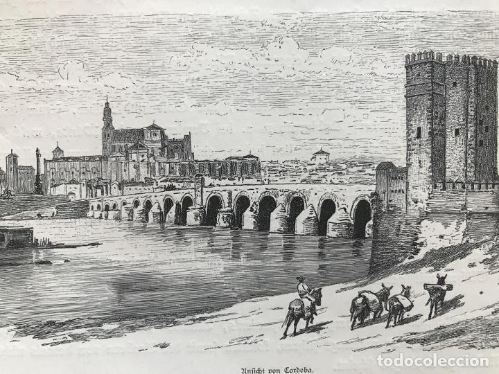 Arte: Vista panorámica de Córdoba (España), hacia 1885. Anónimo - Foto 4 - 236149740