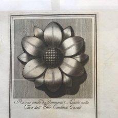 Arte: ROSONE ANTICO PRESO DA FRAMMENTI ANTICHI NELLE CAVE DELL EMO CARDINAL CASALI. CARLO ANTONINI. 1777. Lote 236764640