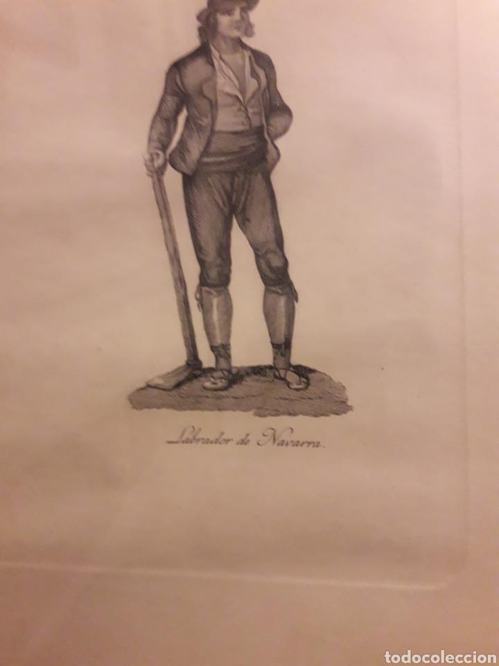 Arte: Antiguo grabado, Labrador de Navarra - Foto 3 - 237752145
