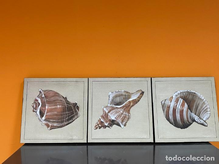 LOTE DE TRES CUADROS LAS TRES CARACOLAS (Arte - Grabados - Contemporáneos siglo XX)