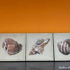 Arte: LOTE DE TRES CUADROS LAS TRES CARACOLAS. Lote 238382505