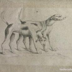 Arte: ANTIGUO GRABADO PERROS DE CAZA - S. XVIII-XIX. Lote 239597230