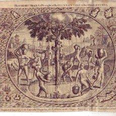 Arte: GRABADO 1748 ARBOL DEL AGUA - EL HIERRO - TENERIFE - ORIGINAL DESNUDOS. Lote 245532285
