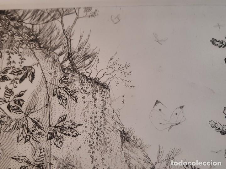 Arte: Grabado Calcografía Jean Emile Laboureur l'entomologiste El Entomólogo Edición Louvre - Foto 5 - 250145125
