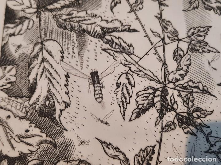 Arte: Grabado Calcografía Jean Emile Laboureur l'entomologiste El Entomólogo Edición Louvre - Foto 6 - 250145125