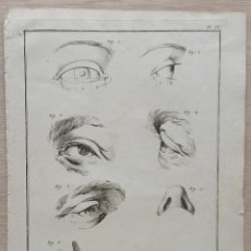 Arte: ANTIGUO GRAN GRABADO S. XVIII . DISEÑO: NARIZ Y OJOS . FRANCIA. Lote 254446485