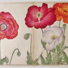 Arte: PRECIOSAS FLORES, GRABADO JAPONÉS ORIGINAL, CIRCA 1860, XILOGRAFÍA, UKIYO-E, MUY RARAS Y COTIZADAS. Lote 254548565