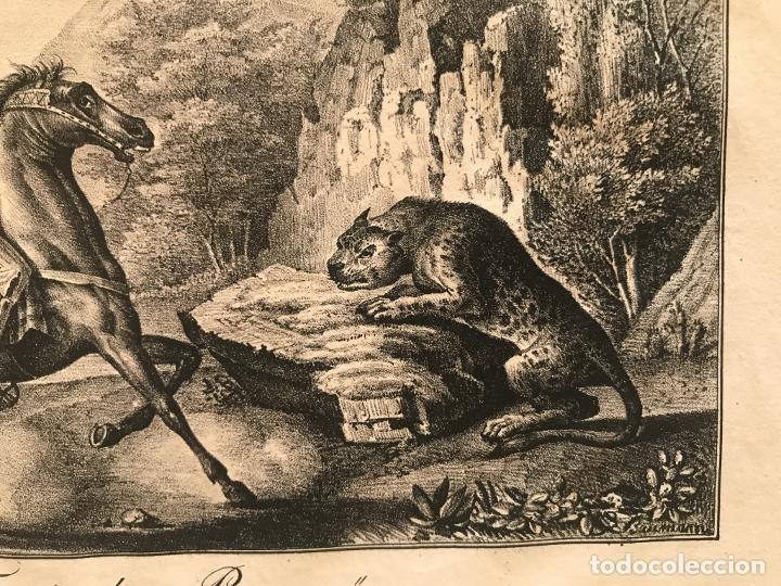 Arte: Caza del jaguar en Paraguay (América del sur), 1832. Baumann - Foto 7 - 260831345