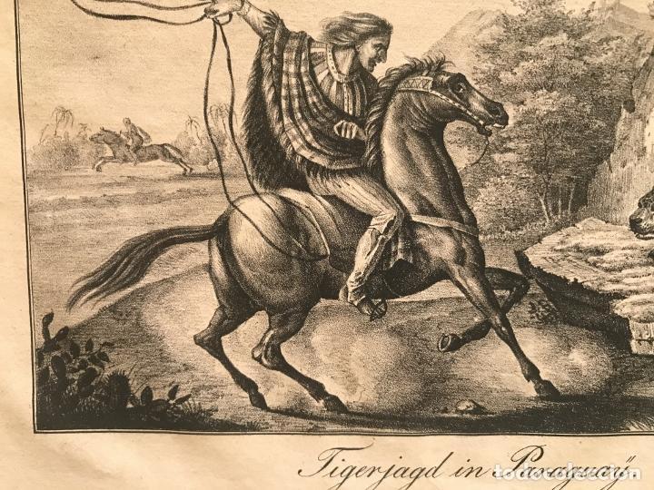 Arte: Caza del jaguar en Paraguay (América del sur), 1832. Baumann - Foto 8 - 260831345