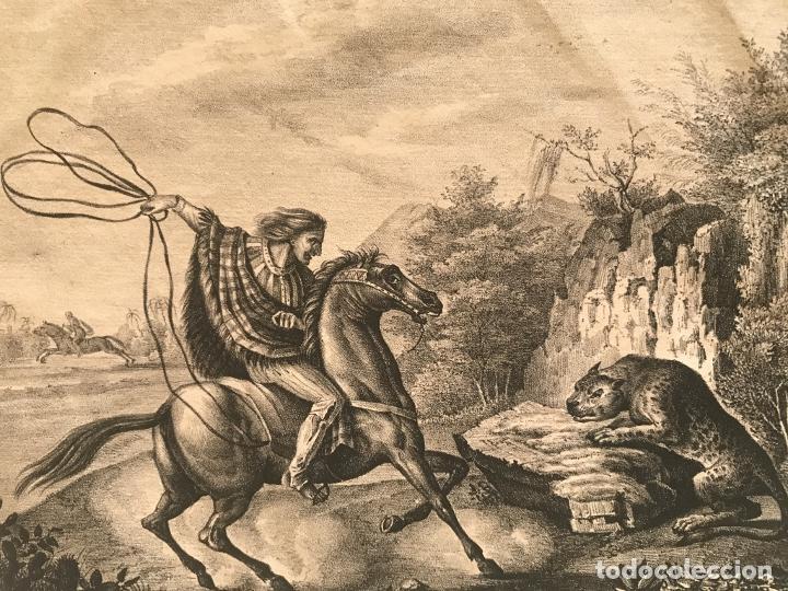 Arte: Caza del jaguar en Paraguay (América del sur), 1832. Baumann - Foto 9 - 260831345