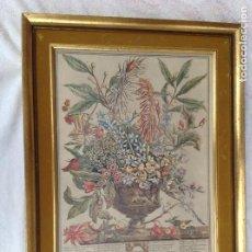 Arte: GRABADO ICOLOREADO INGLES. AÑO 1730. Lote 263120990