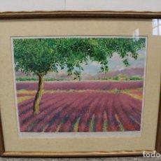 Arte: GRABADO DE PETER COATES, LAVENDER LANDSCAPE ,FIRMADO Y NUMERADO , 10/350. Lote 265405379