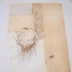 Arte: ANNA LENTSCH (MONTZEN, BÉLGICA, 1943). Lote 281918273
