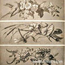 Arte: PRECIOSO GRABADO ART NOUVEAU CIRCA 1900 ANTIQUE UNIQUE. Lote 288535728