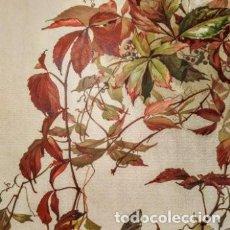 Arte: PRECIOSO GRABADO ART NOUVEAU CIRCA 1900 ANTIQUE UNIQUE. Lote 288536903