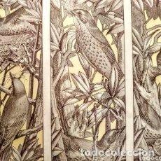 Arte: PRECIOSO GRABADO ART NOUVEAU CIRCA 1900 ANTIQUE UNIQUE. Lote 288861063