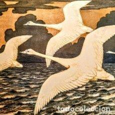 Arte: GRABADO ART NOUVEAU CIRCA 1900 ANTIQUE UNIQUE. Lote 288861563