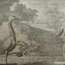 Arte: EMBLEMA ALEGÓRICO: GRULLA Y DIABLO SEMBRANDO, 1730. HENDRIK GRAAUWHART /C.H.. Lote 295517483